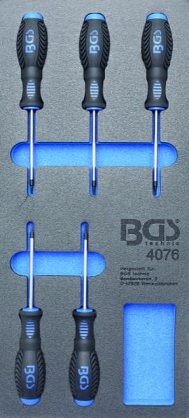 BGS - Werkstattwageneinlage T-Profil-Schraubendreher, T6-T10, 5-tlg. (Art. 4076)