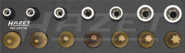 HAZET Werkzeug-Satz, TORX® 163-251/14